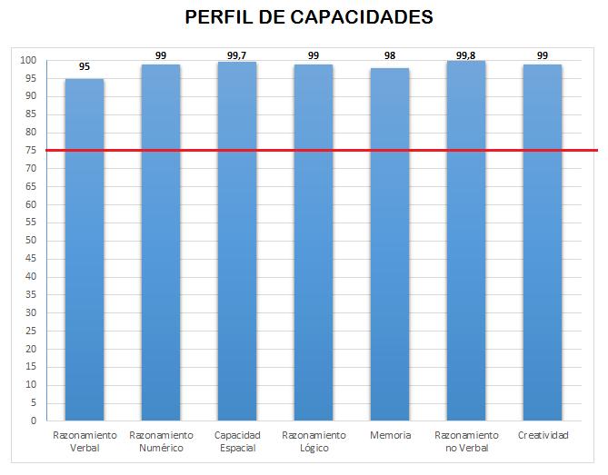 Perfil de capacidades BLOG