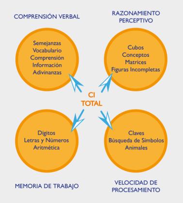 Estructura WISC-IV (4 índices)